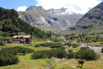 Alpenrosenhütte | Zemmgrund
